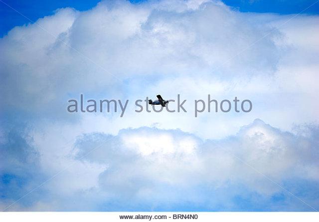 Fuselage Biplane - Stock Image