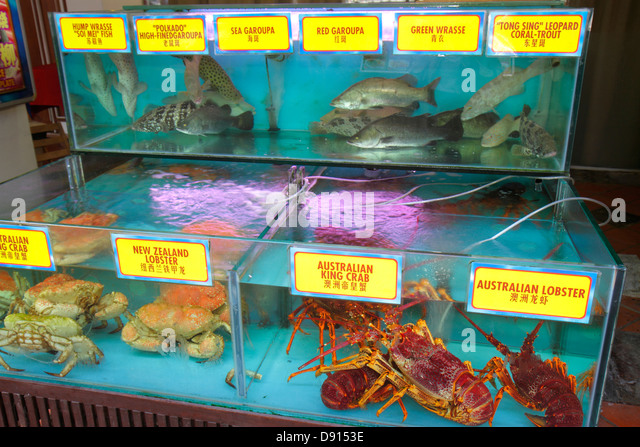 Singapore Singapore River Boat Quay restaurant hanzi characters Chinese live seafood tank lobster crab fish - Stock Image