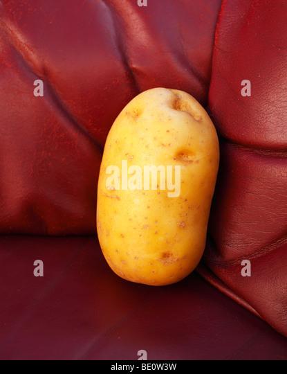 Couch potato. - Stock Image