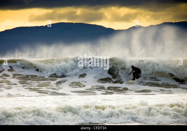 Man surfing, Vancouver Isalnd, British Columbia, Canada - Stock Image