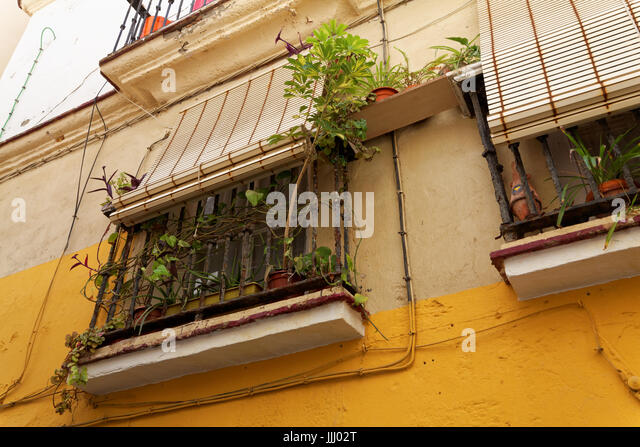 window boxes, Cadiz, Spain - Stock Image
