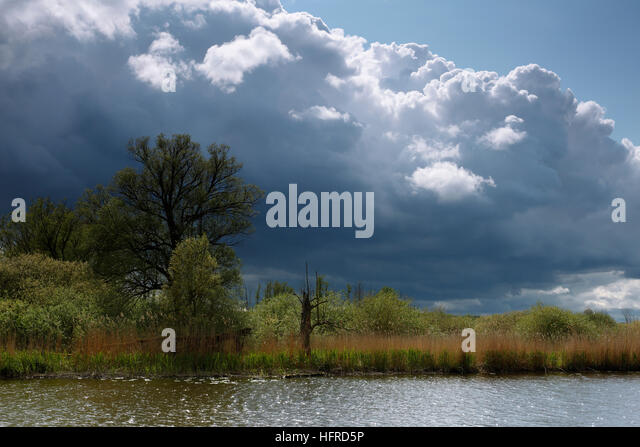 Cloudy atmosphere, River Trebel, Peenetal Nature Park, Mecklenburg-Western Pomerania, Germany - Stock Image