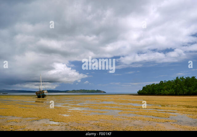 sailing boat at low tide, Madagascar, Nosy Be, Lokobe Reserva - Stock Image