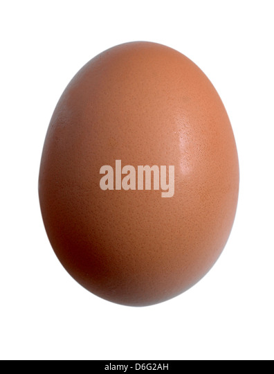 Organic Egg -  cutout - Stock Image