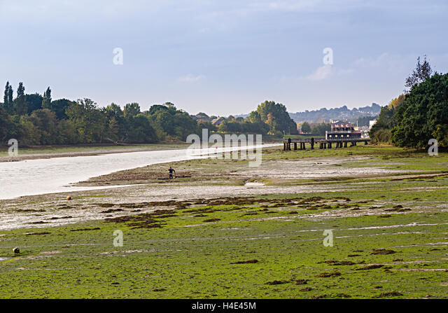 Low tide in estuary of Medina river with man digging for worms in mud, Isle of Wight, UK - Stock Image