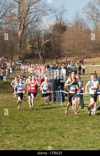 cross hill men The official website for the lincoln memorial university railsplitters athletics.