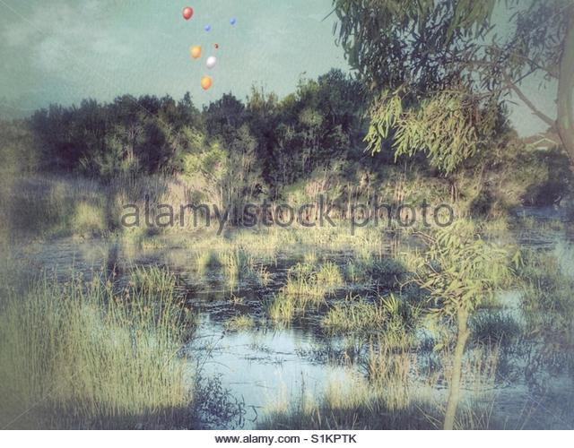 image of a pond, with Balloons floating  in the sky' - Stock Image