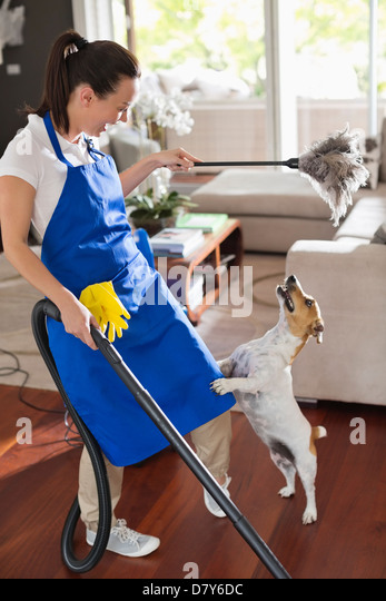 Maid playing with dog in living room - Stock Image