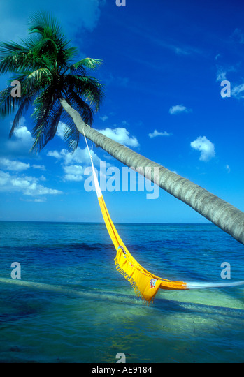 Hammock hanging from coconut palm tree over water in Puerto Rico Caribbean Property released image - Stock Image