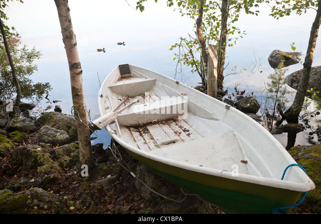 Old white rowing Boat moored on the coast in the forest - Stock Image