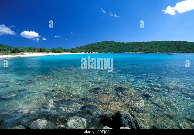 St John US Virgin Islands National Park Salt Pond Bay coral and clear water - Stock Image