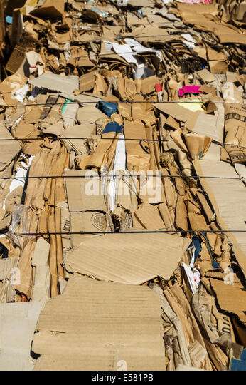 old cardboard boxes pressed into bales for recycling - Stock Image