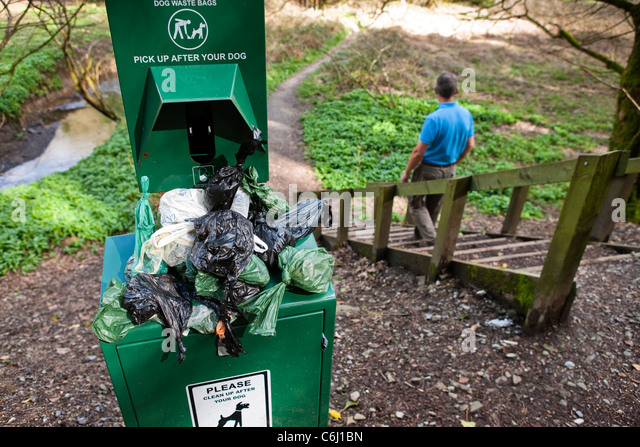 Overflowing Dog waste bin on footpath walker going down steps - Stock Image