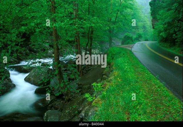Great Smoky Mountains NP Tennessee USA - Stock Image