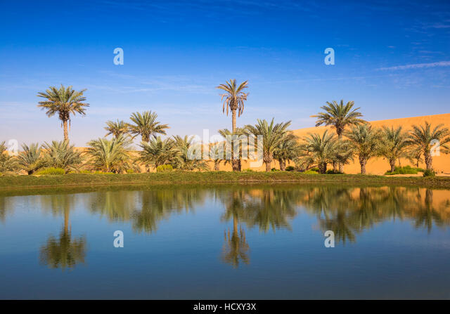 Remah Desert, Al Ain, Abu Dhabi, United Arab Emirates, Middle East - Stock Image