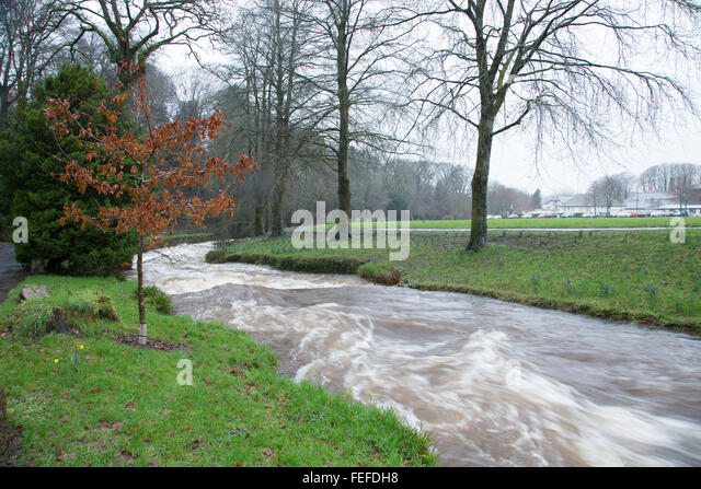 Okehampton, Devon, UK. 6th February, 2016. High river levels at Simmons Park in Okehampton during storm. © - Stock Image