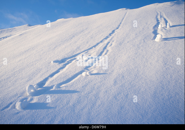 Snowballs rolling down at steep hill , Finland - Stock-Bilder