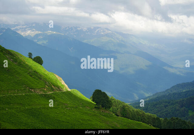 Abkhazia. Alpine meadow. The mountains - Stock Image