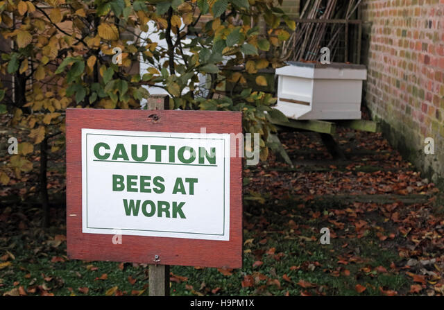 Caution, Bees at Work sign, near hive, autumn - Stock Image