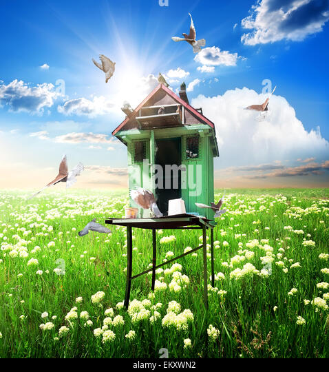 Doves over dovecote in sunny spring day - Stock Image