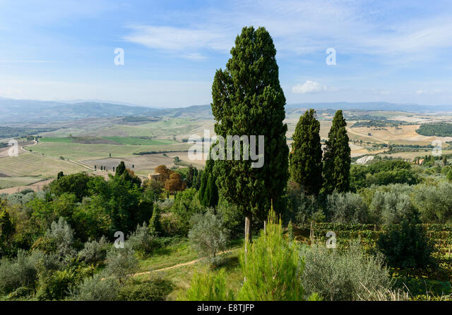 The Val D'Orcia - Stock Image