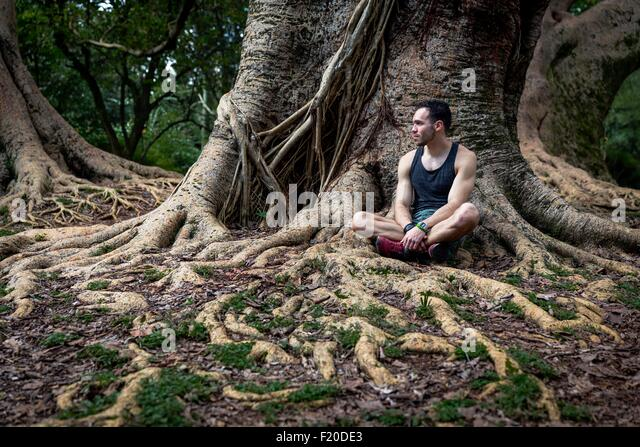 Young man sitting in park tree roots, Sao Paulo, Brazil - Stock Image