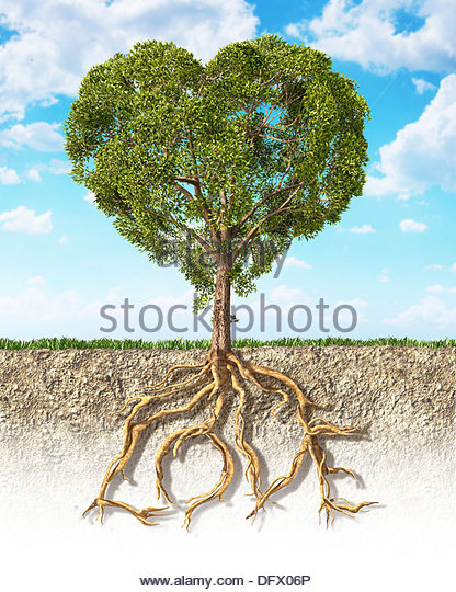 Cross section of soil showing a heart-shaped tree with its roots as text Love - Stock Image