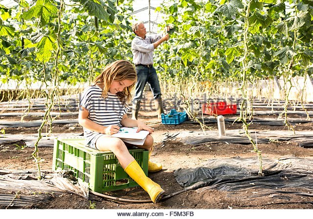 Girl sitting on crate in hothouse drawing while grandfather works behind - Stock-Bilder