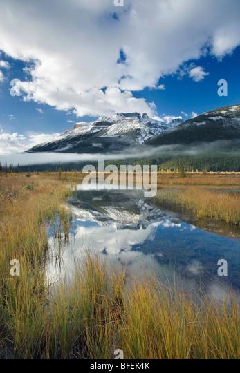 Graveyard Flats with North Saskatchewan River and Mount Amery, Banff National Park, Alberta, Canada - Stock Image
