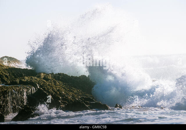 A big wave in a stormy ocean smashing against a rock with splash and foam blown by the wind. - Stock Image