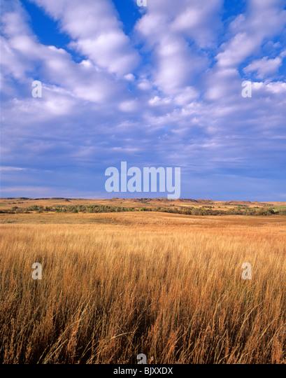Prairie at Washita Battlefield National Historic Site near Cheyenne, Oklahoma, USA - Stock Image