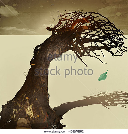 Dead tree with green leaf dropping from it - Stock-Bilder