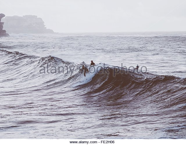 People Surfing In Sea - Stock Image