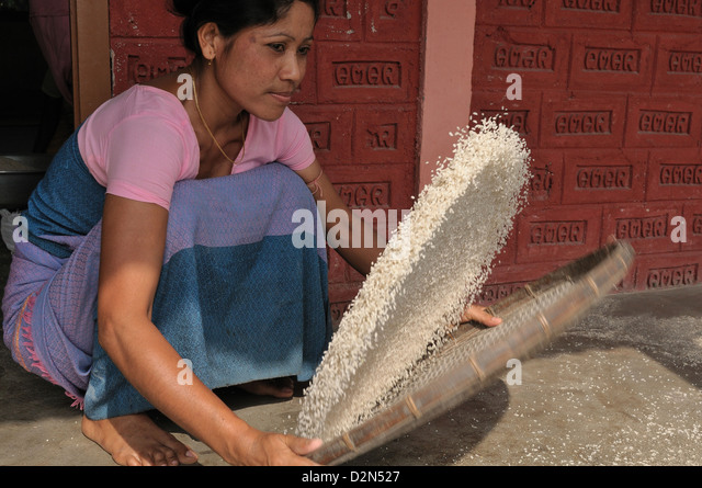 Sieving rice, Assam, India, Asia - Stock Image