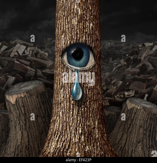 Mother nature crying concept as a background of chopped wood and cut trunks with one surviving tree with an open - Stock-Bilder