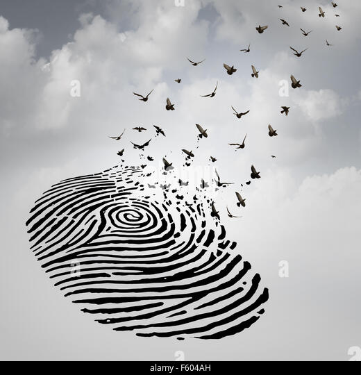 Identity freedom concept as a fingerprint transforming into flying birds as a metaphor for a person losing a psychological - Stock-Bilder