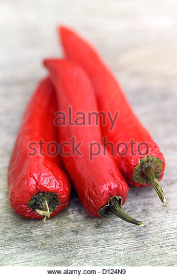red chili peppers capsicum annuum as Browse pictures and read growth / cultivation information about hot pepper, hot cherry pepper, cherry chili pepper, pimienta (capsicum annuum) 'hot red cherry' supplied by member gardeners in the p.