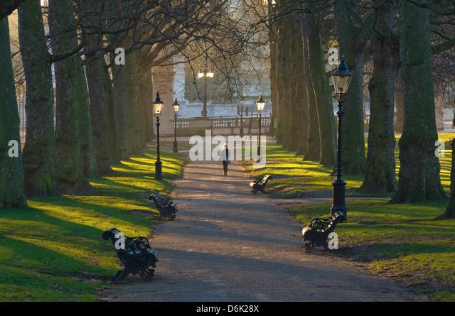 Sunrise, Green Park, London, England, United Kingdom, Europe - Stock Image