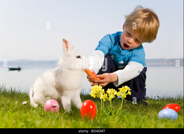 boy feeding bunny carrot, easter eggs - Stock Image