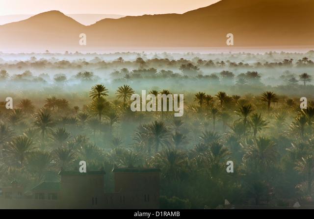 Morocco, near Zagora, kasbah Ziwane near hotel Dar El Hiba. Sunrise over oasis and palm trees. kasbah and ksar. - Stock Image
