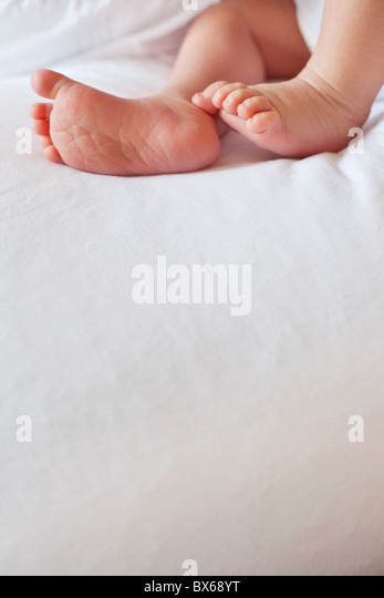 Small babies feet above large copy space - Stock Image