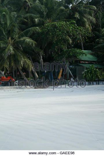 Ocean Beach Surfboard Rental