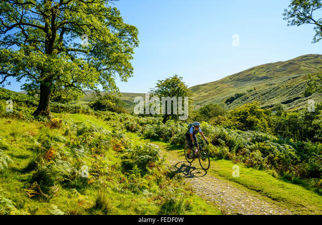 Female cyclist on grass track in Barbondale Cumbria - Stock Image