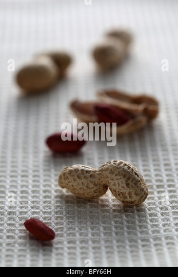 Monkey nuts peanuts shelled shell Arachis hypogaea roast red skinny eat drink food veg vegetarian healthy soft focus - Stock-Bilder