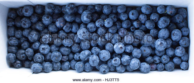 Blue Berries and Mixed - Stock Image