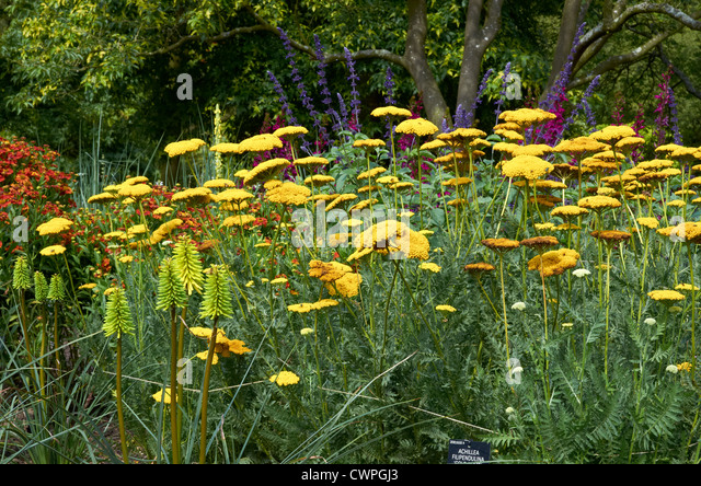 Landscape Gardeners Near Chorley U2013 Izvipi.com