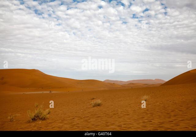 Deadvlei in Sossusvlei in Namibia - Stock Image