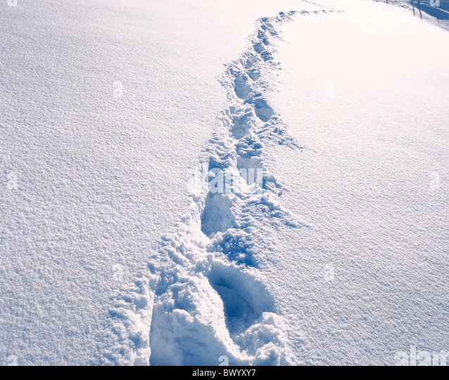 foot print footprints snow tracks traces deep snow winter - Stock Image