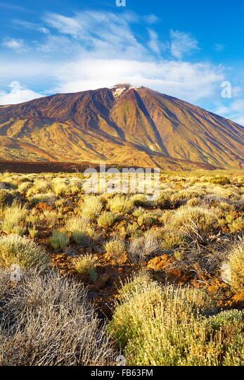 Tenerife - Teide National Park, Mount Teide, Canary Islands, Tenerife, Spain - Stock Image