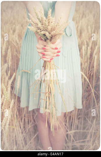 Woman holding some corn spikes - Stock-Bilder